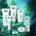 algues cosmétiques soins beauté fucoïdane